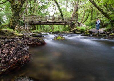 Dartmoor rivers