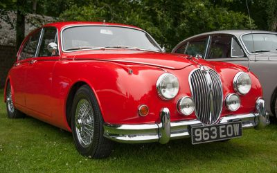 Jaguar Enthusiasts Club, at Buckland Abbey